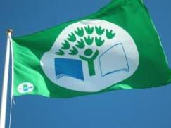 grön flagg